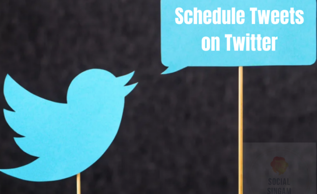 Twitter Logo With Schedule Tweets Text